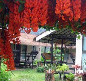 Apple camp Resort in Khao Yai