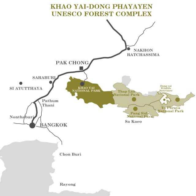Khao yai unesco forest program