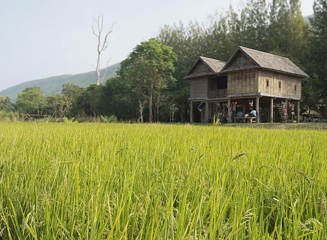 Jim Thompson farm in Korat