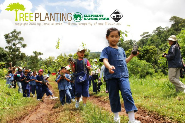 Tree planting project in Khao Yai